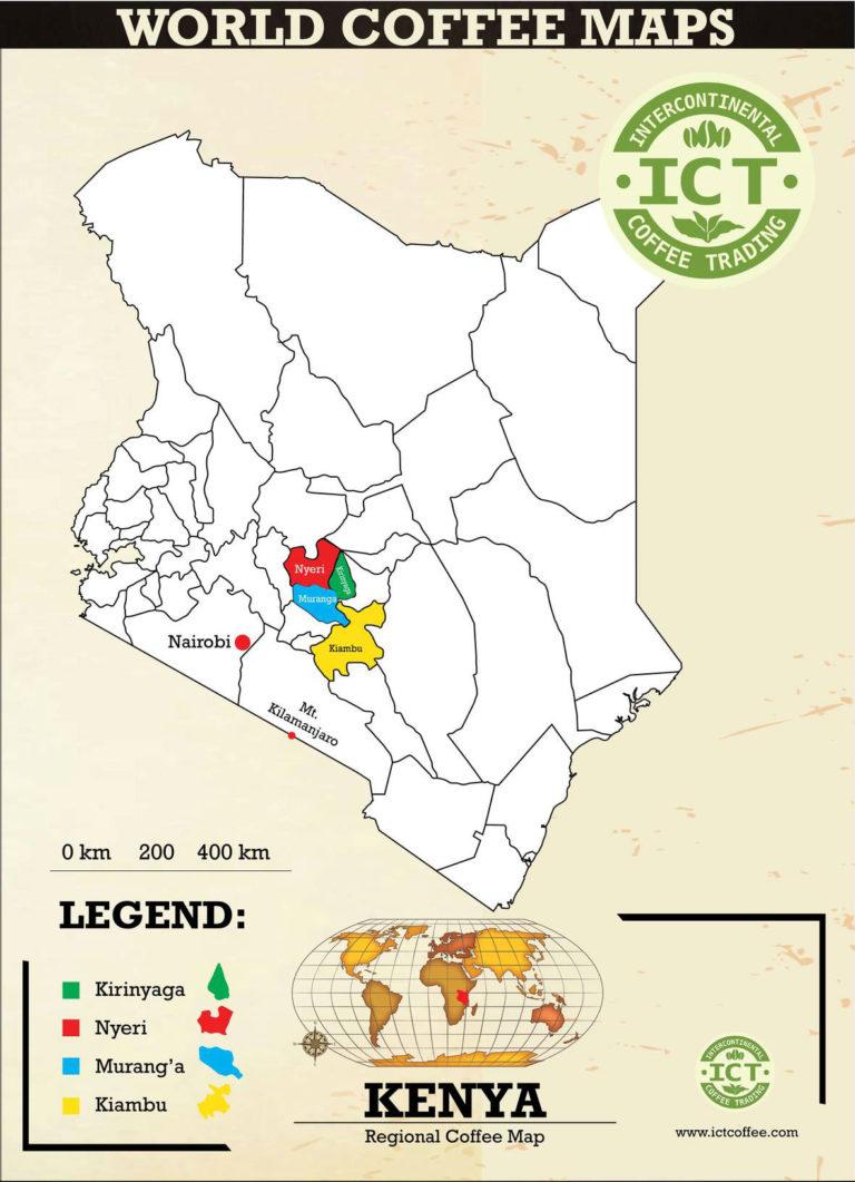 plantacja w keni