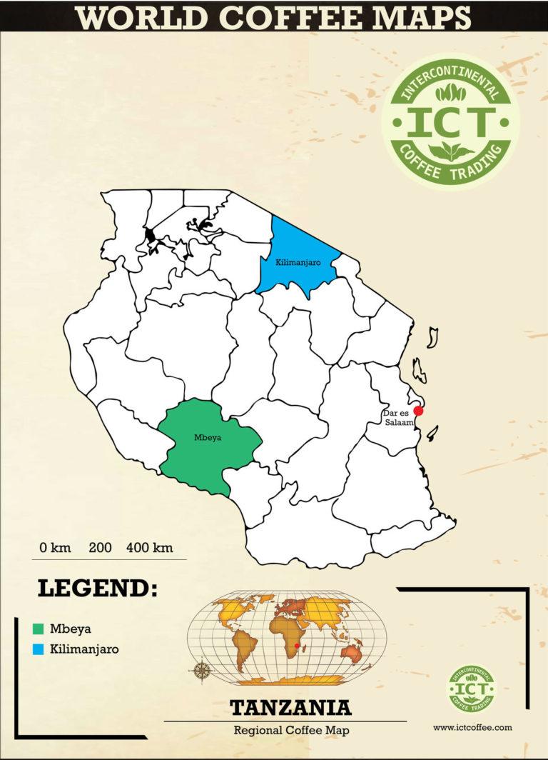 plantacja kawy w tanzanii
